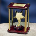 Brass Star Enclosed in Glass Box Employee Awards