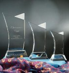 Firefly Award Sales Awards